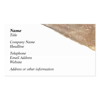 Edge of Seashell Close Up Picture Business Card