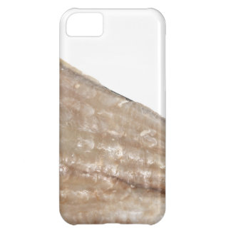 Edge of Seashell. Close Up Picture. iPhone 5C Cover