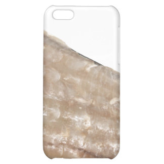 Edge of Seashell. Close Up Picture. iPhone 5C Covers