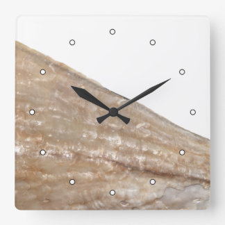 Edge of Seashell. Close Up Picture. Square Wall Clocks