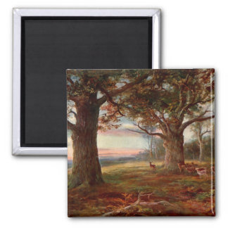 Edge of Sherwood Forest 2 Inch Square Magnet