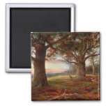 Edge of Sherwood Forest Refrigerator Magnets