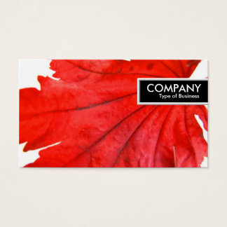 Edge Tag - Japanese Maple Leaf