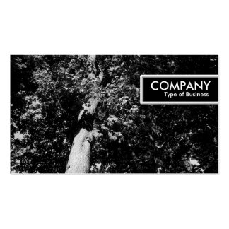 Edge Tag - London Plane Tree B&W Double-Sided Standard Business Cards (Pack Of 100)