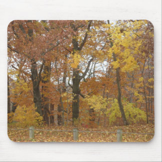 Edgewood Park in Autumn by Jackie Mouse Pad