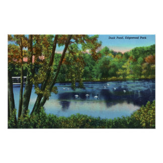 Edgewood Park View of the Duck Pond Poster