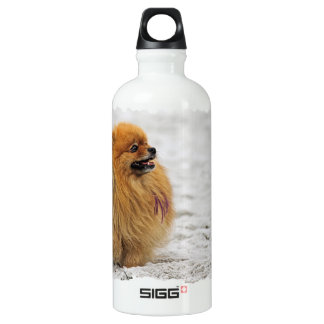 Edgrrrr #3 - Pomeranian Aluminum Water Bottle