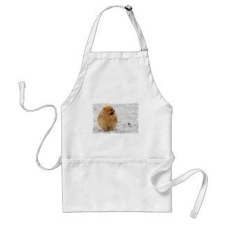 Edgrrrr #3 - Pomeranian Aprons