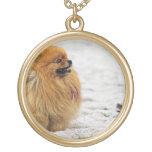 Edgrrrr #3 - Pomeranian Collar Dorado