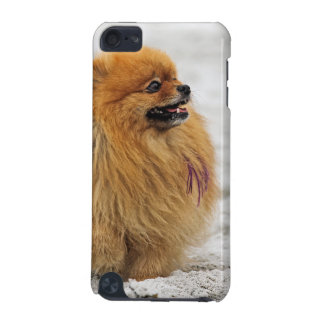 Edgrrrr #3 - Pomeranian iPod Touch (5th Generation) Case
