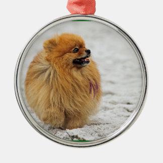 Edgrrrr #3 - Pomeranian Christmas Ornaments