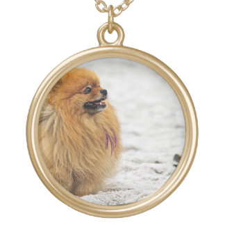 Edgrrrr #3 - Pomeranian Round Pendant Necklace