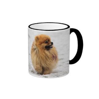 Edgrrrr #3 - Pomeranian Taza De Dos Colores