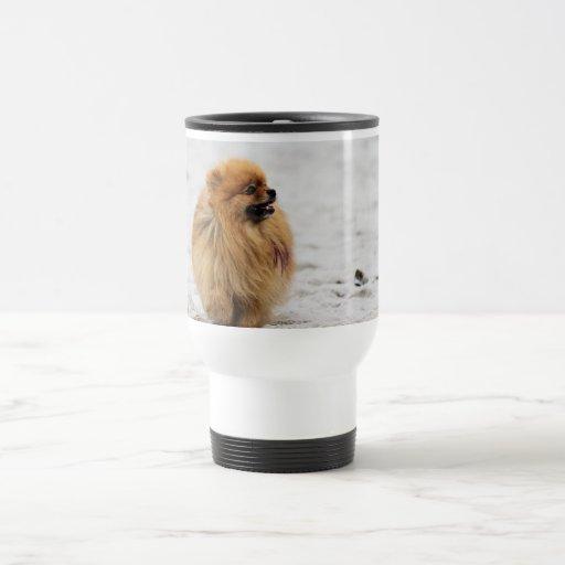 Edgrrrr #3 - Pomeranian Tazas De Café