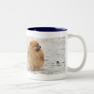 Edgrrrr #3 - Pomeranian Two-Tone Coffee Mug