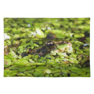 Edible Frog Pelophylax kl. Esculentus Placemat