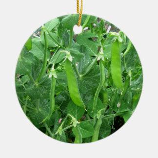 Edible Peas Ready to Eat - photograph Ceramic Ornament