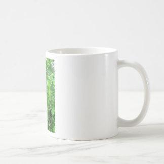 Edible Peas Ready to Eat - photograph Coffee Mug