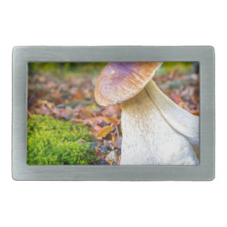 Edible porcini mushroom on forest floor in fall rectangular belt buckle