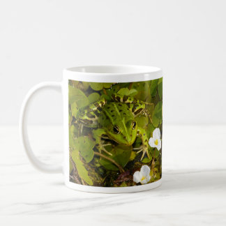 Edible Water Frog Pelophylax Esculentus Coffee Mug