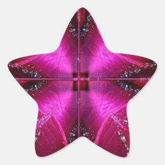 Edición de los colectores - color de rosa rosado calcomanía forma de estrella