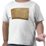 Edict of Emperor Diocletian Tshirts