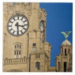 Edificio del hígado, Liverpool, Merseyside, Inglat Azulejo Cuadrado Grande
