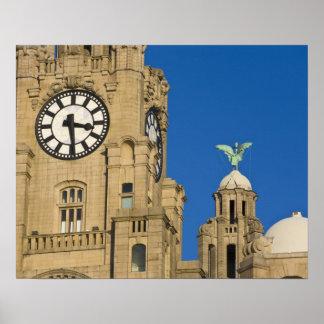 Edificio del hígado, Liverpool, Merseyside, Inglat Póster