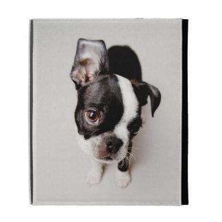 Edison Boston Terrier puppy. iPad Folio Cases
