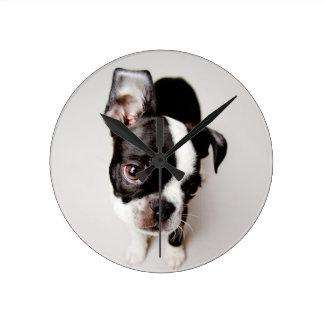 Edison Boston Terrier puppy. Round Clock