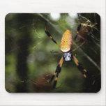 Edisto Golden Silk Spider 3519 Mousepads