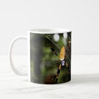 Edisto Golden Silk Spider 3519 Classic White Coffee Mug