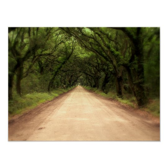 Edisto Island South Carolina Poster