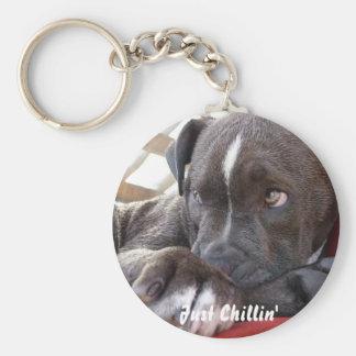 Editable Baby Pitbull Puppy Keychain
