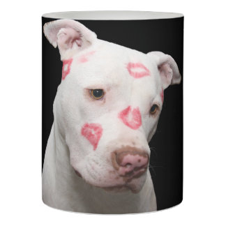 Editable Pitbull Lover Flameless Candle