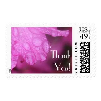 Editable Thank You Text w/ Pink Azalea Photo Postage