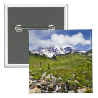 Edith Creek and wildflower meadows at Paradise Pins