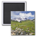 Edith Creek and wildflower meadows at Paradise Fridge Magnet