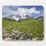 Edith Creek and wildflower meadows at Paradise Mouse Pads