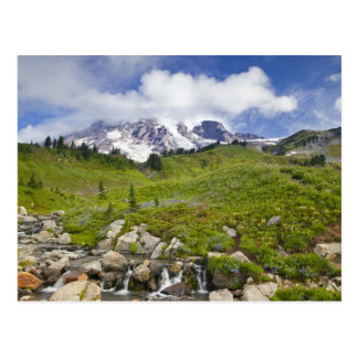 Edith Creek and wildflower meadows at Paradise Postcard