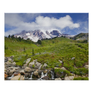 Edith Creek and wildflower meadows at Paradise Poster