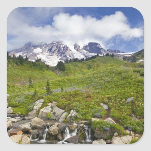 Edith Creek and wildflower meadows at Paradise Sticker