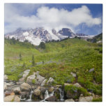 Edith Creek and wildflower meadows at Paradise Ceramic Tiles
