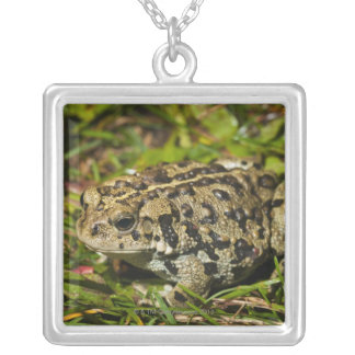 edmonton, alberta, canada 2 square pendant necklace