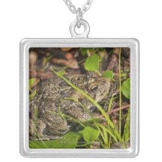 edmonton, alberta, canada square pendant necklace