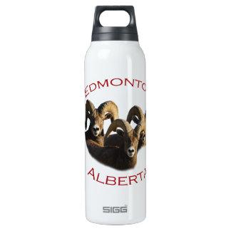 Edmonton, Alberta SIGG Thermo 0.5L Insulated Bottle