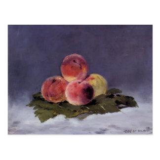 Edouard Manet- Peaches Postcard