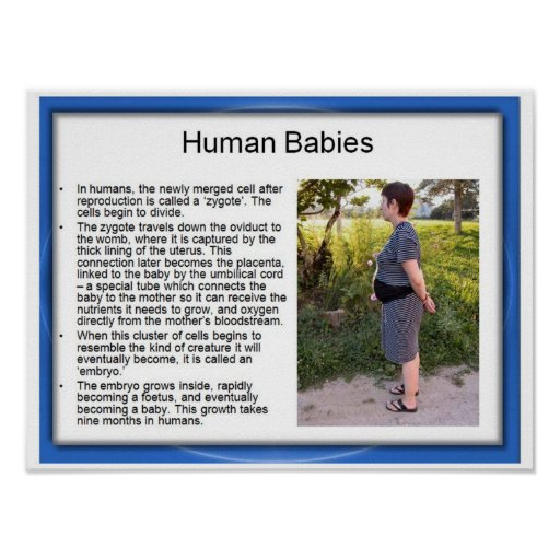 Educación, ciencia, bebés humanos impresiones