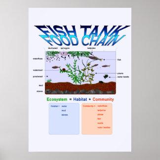 Educación, ciencia, cadena alimentaria del acuario póster