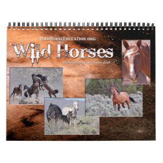 Educación del caballo salvaje… un calendario